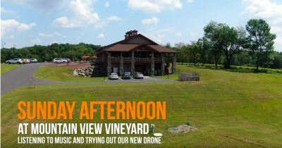Mountain View Vineyard on a Sunday Afternoon
